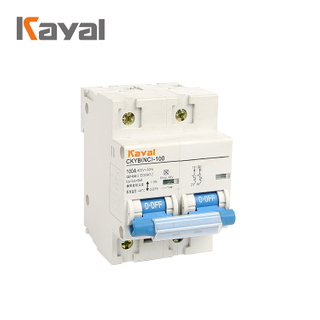 Promotional Prices Miniature Circuit Breaker 100a Switch Mcb